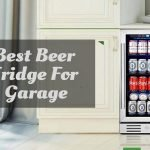 Best Beer Fridge for garage