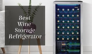 Top 10 Best Wine Storage Refrigerator In 2021