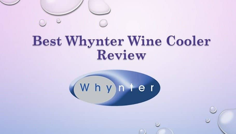 Best Whynter Wine Cooler Review