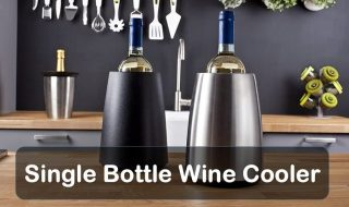 Best Single Bottle Wine Cooler Reviews of 2021