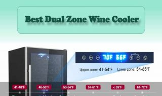 10 Best Dual Zone Wine Cooler Reviews 2021