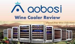 Aobosi Wine Cooler Reviews