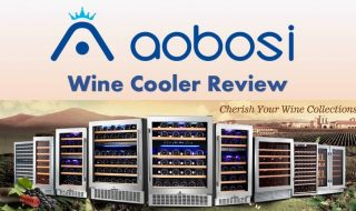 Aobosi Wine Cooler Reviews 2021: Best Dual Zone Wine Cooler
