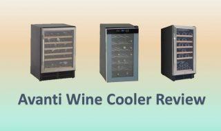 6 Best Avanti Wine Cooler Reviews 2020 Updated