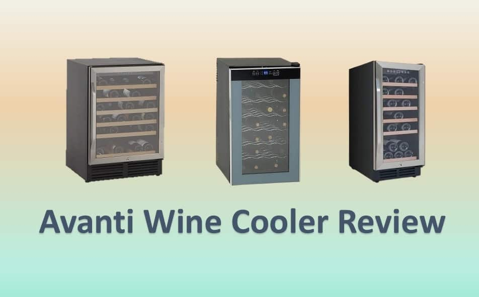 Best Avanti Wine Cooler Reviews