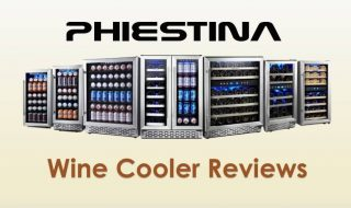 Best Phiestina Wine Cooler Reviews 2021