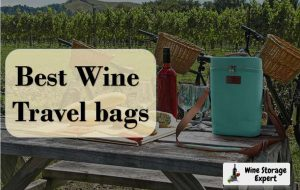Best Wine Travel Bags