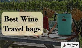 10 Best Wine Travel Bags to Look in 2021