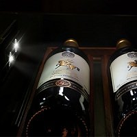LED light of wine cooler