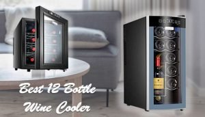 Best 12 Bottle Wine Cooler