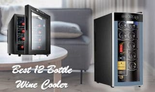 Best 12 Bottle Wine Cooler to Look in 2021