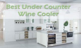 Best Under Counter Wine Cooler In 2021