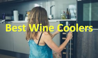 Best Wine Coolers of 2021: Top Picks with Reviews