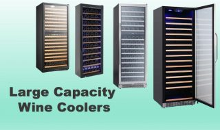 Best 100-600 Bottle Large Capacity Wine Cooler Reviews